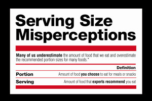 Portion Size Infographic Thumbnail