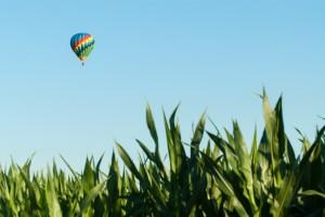 Balloon-Ride-Wish